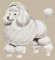 Poodle - full body PDF