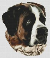 Saint Bernard Grace