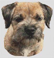 Border Terrier 2 PDF