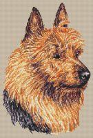 Australian Terrier PDF