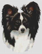 Black and White Papillon PDF