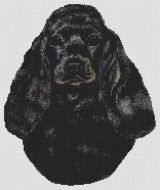 Black Cocker Spaniel PDF