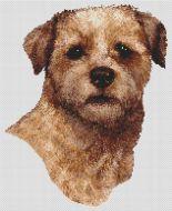 Red Border Terrier PDF