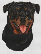Rottweiler 2 PDF