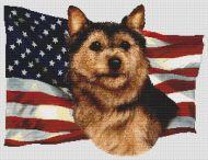 Patriotic Norwich Terrier