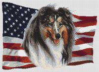 Patriotic Blue Merle Collie