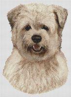 Cream Glen of Imal Terrier