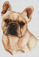 Cream French Bulldog PDF