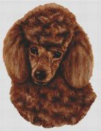Red Poodle PDF