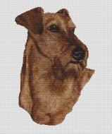 Irish Terrier PDF