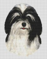 Black and White Havanese PDF