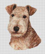 Red Lakeland Terrier