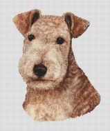 Red Lakeland Terrier PDF