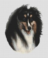 Tri-color Collie PDF