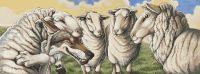 Sheeps Clothing PDF