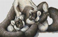 Ruffed Lemur PDF