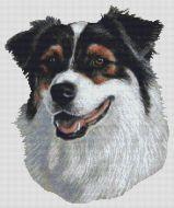 Australian Shepherd Tri-color II PDF