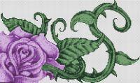 Purple Rose PDF