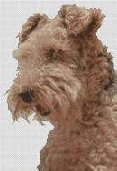 Airedale Terrier PDF