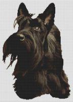 Scottish Terrier Adoration PDF