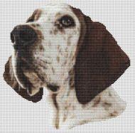 Treeing Walker Coonhound Portrait PDF