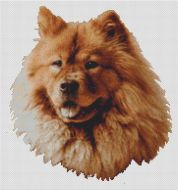 Red Chow Chow PDF