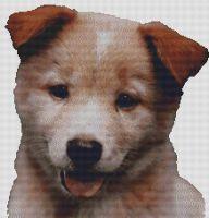 Red Australian Cattle Dog Puppy PDF