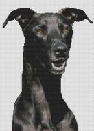 Black Greyhound PDF
