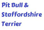 Pit Bull and Staffordshire Terrier